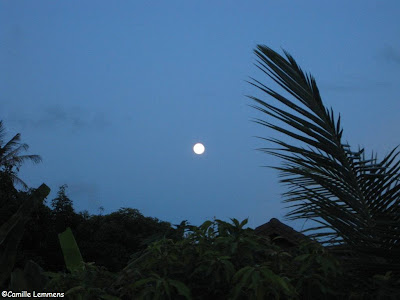 Fading full moon over Koh Samui