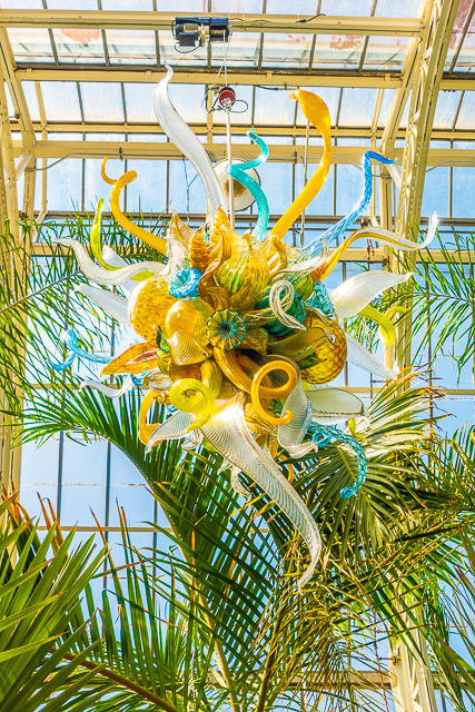 Chihuly at The Biltmore - Burnished Amber, Citron and Teal Chandeliers, 2015