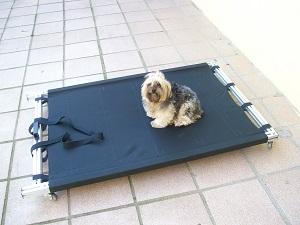 maca para cães com lesão
