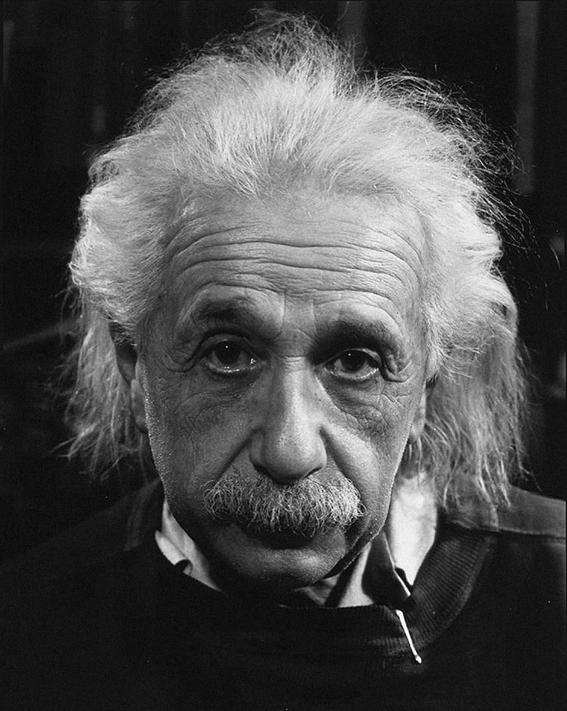diversity is beautiful albert einstein on minorities and majorities the determined effort of the american negroes in this direction deserves every recognition and assistance albert einstein