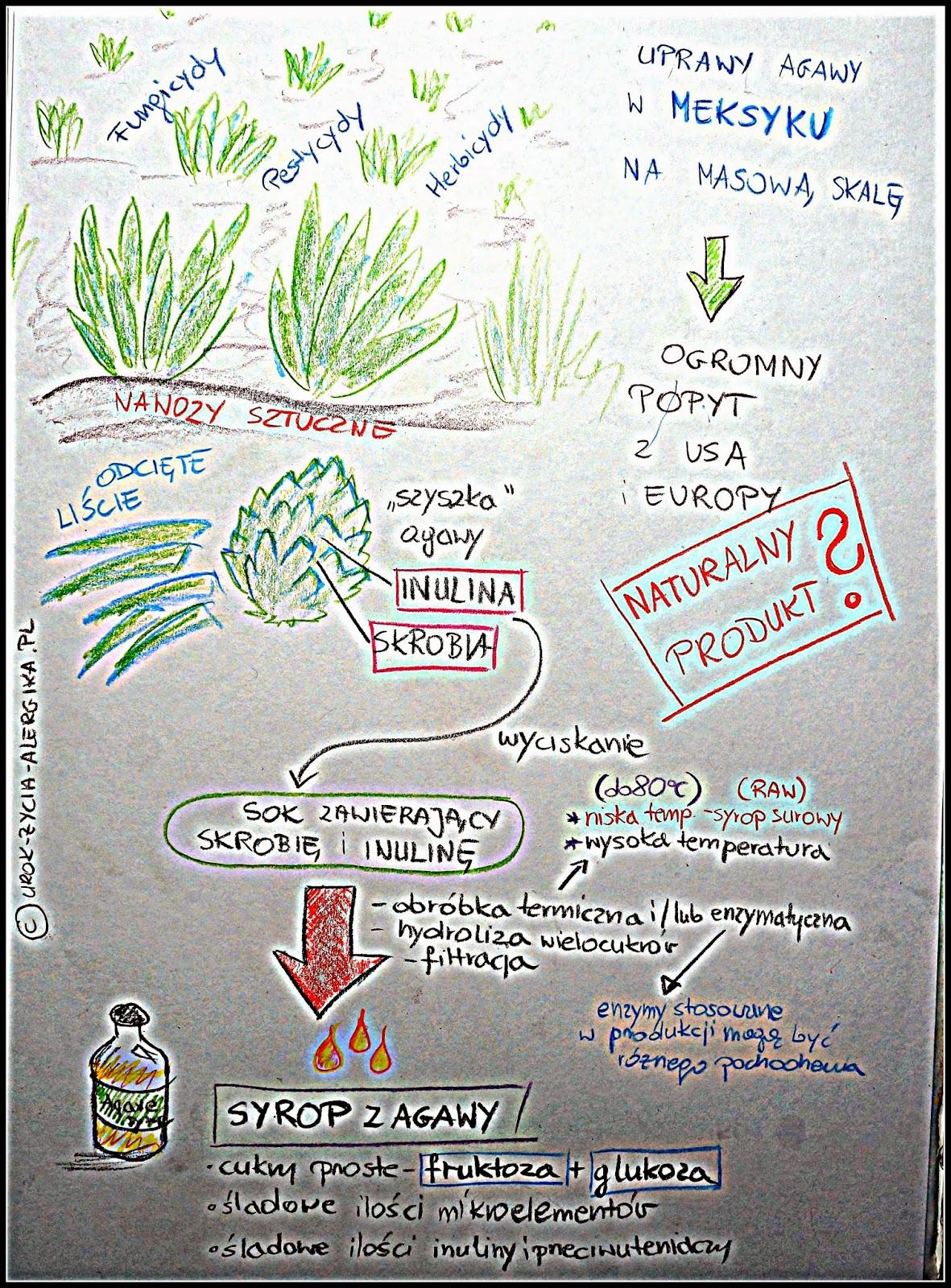 syrop z agawy schemat