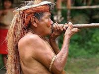 Misteri Mengelilingi DNA Australasia