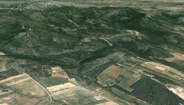 «Πρωταθλήτρια» η Μεσσηνία στις αντιρρήσεις για Δασικούς Χάρτες