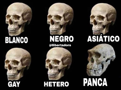 Calavera, cráneo, panca, blanco, negro, asiático, gay, hetero