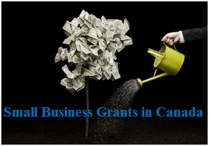 Get Government Grants for Small Businesses in Canada