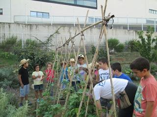 http://www.mamaterra.info/ca/categoria-1/nova-edicio-del-premi-escola-agricultura-i-alimentacio-ecologica-2016.html
