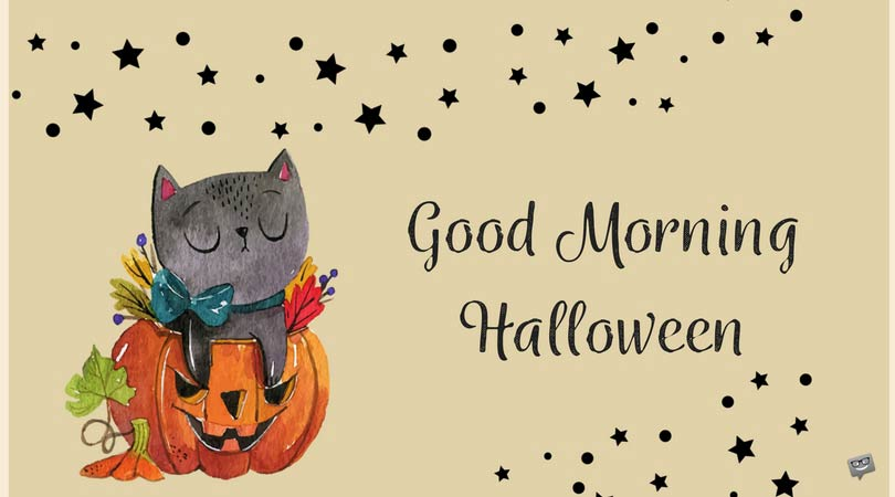 Good-morning-halloween-with-black-cat