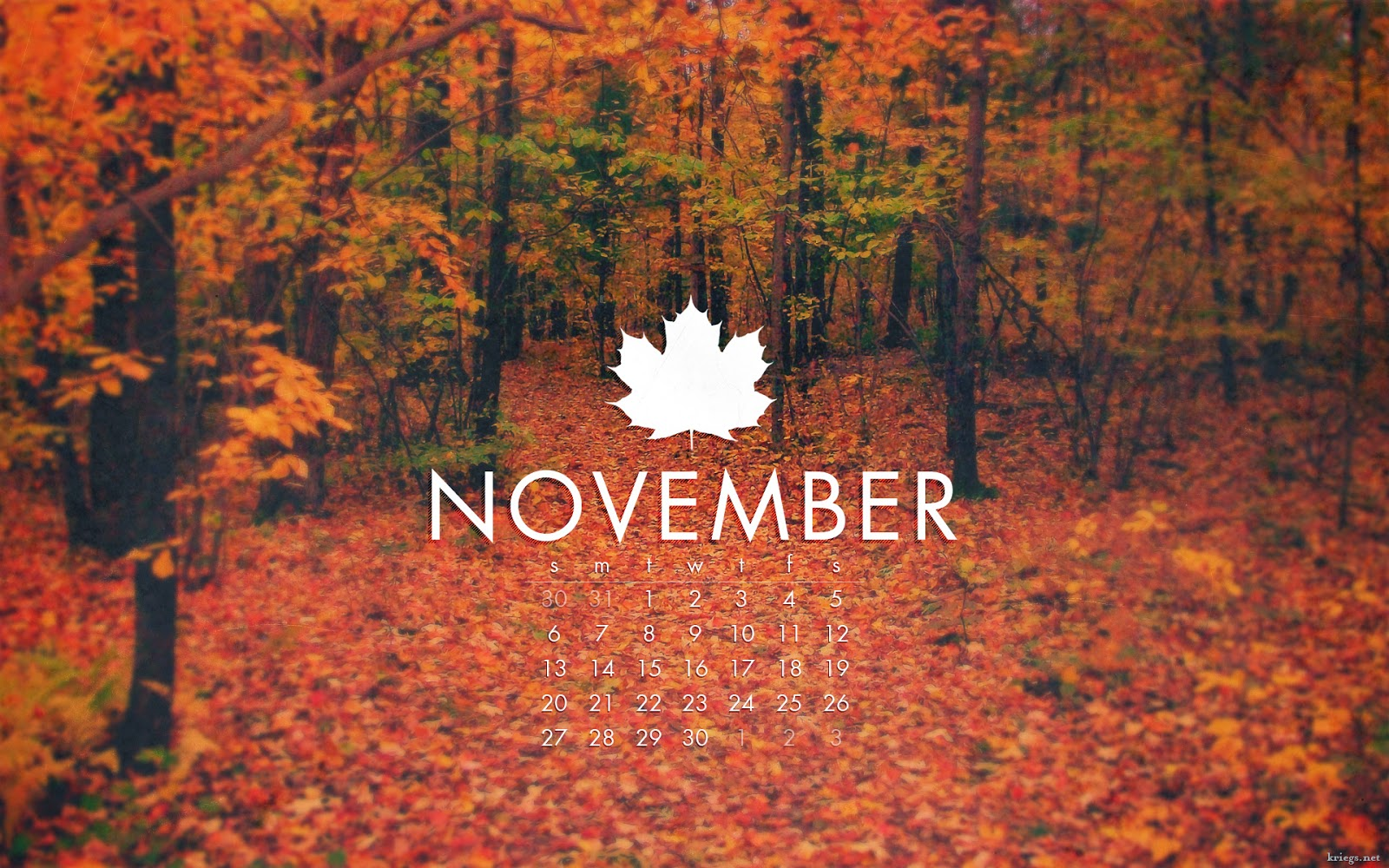 The Magical World of Numbers: November…Balance, Partnerships, Intuition, Mother Energy, Groups