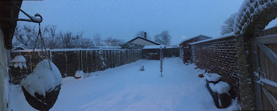 panorama of snow covered garden