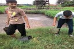 Kolam Pengolahan Limbah Cair Pabrik Kelapa Sawit