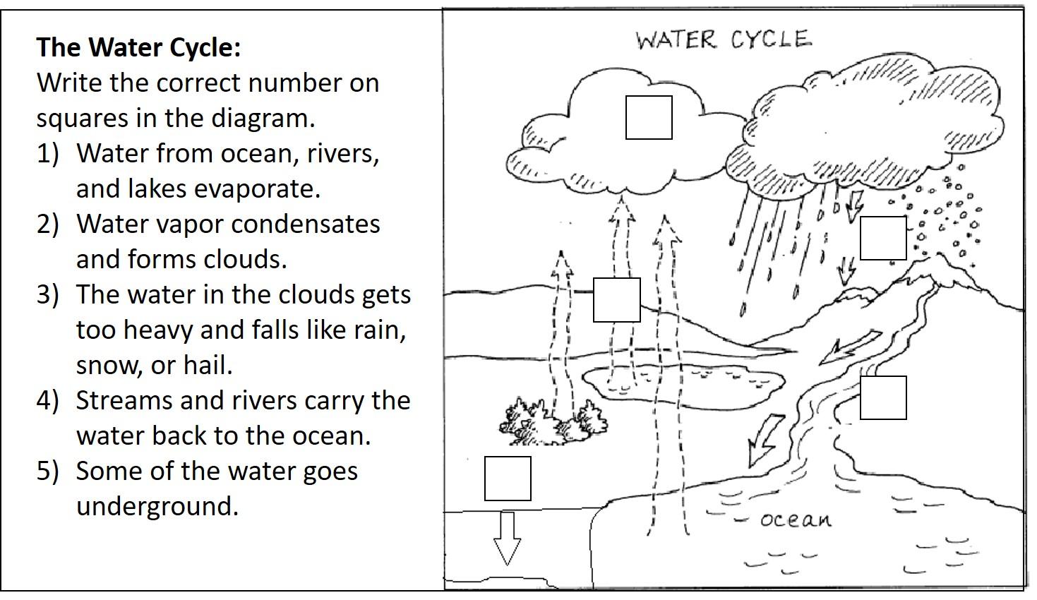 Miss amidas third grade water mind map and water cycle water mind map and water cycle ccuart Gallery