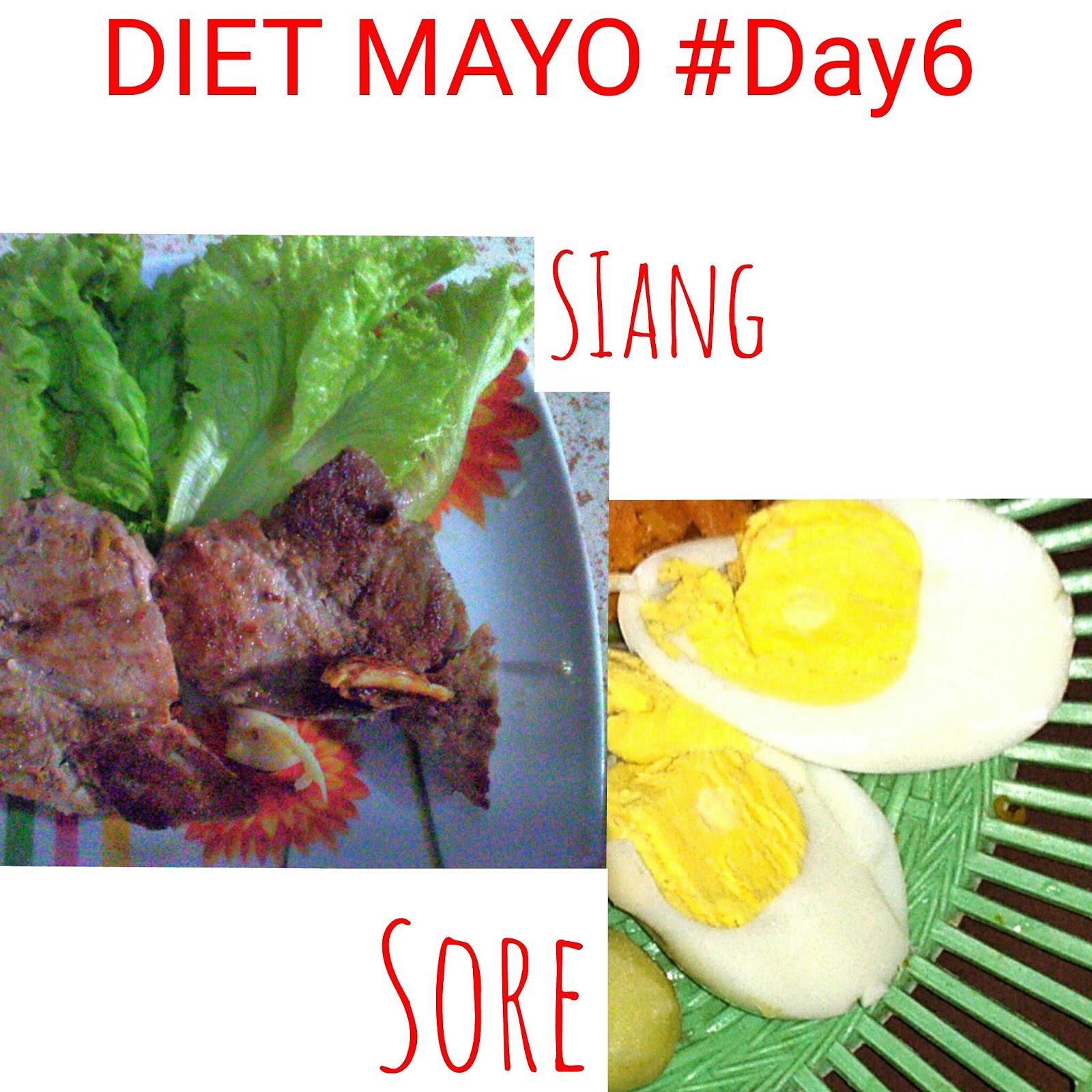 Pengalaman Pribadi Diet Mayo Berhasil Turunkan 4 Kg Dalam Waktu 2 Minggu