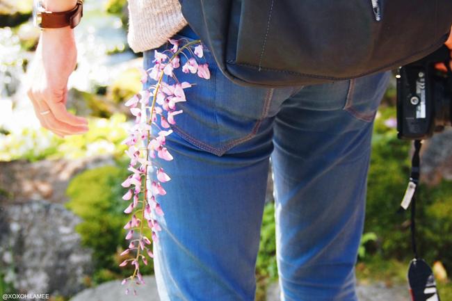 由志園 池泉牡丹 島根県 花 日本庭園 藤