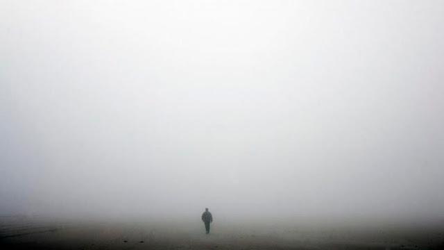 """""""La niebla"""""""