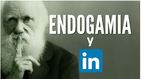 Endogamia-LinkedIn