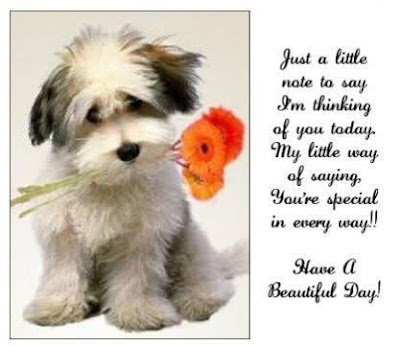 funny dog  just a little note to say I'm thinking of you today. My little way of saying, you're special in every way!!