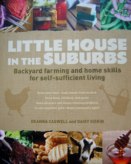 Little House in the Suburbs, great book for forging community strength.