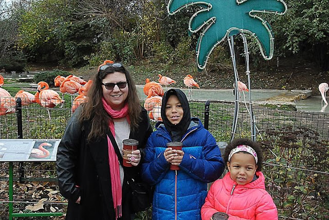Wild about the Columbus Zoo and Aquarium #Wildlights