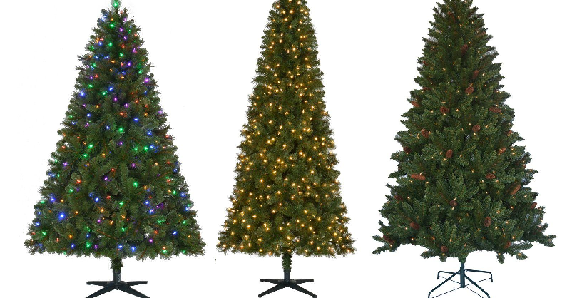 75% Off Christmas Trees Sale! 6.5 Foot Jackson Spruce