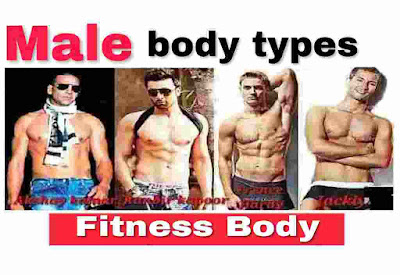 what are the male body types