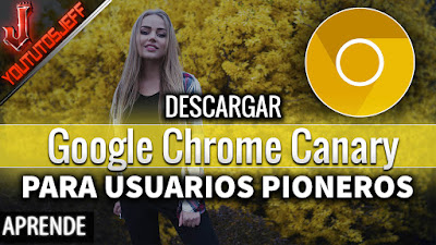 Google Chrome Canary, Chrome Canary, navegadores, alternativas a chrome