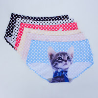 http://www.banggood.com/Ladies-Lovely-Pussycat-Polka-Dot-Blue-Bow-Tie-Silk-Seamless-Panties-Underwear-Briefs-p-1013702.html?utm_source=sns&utm_medium=redid&utm_campaign=naokawaii_10th&utm_content=chelsea