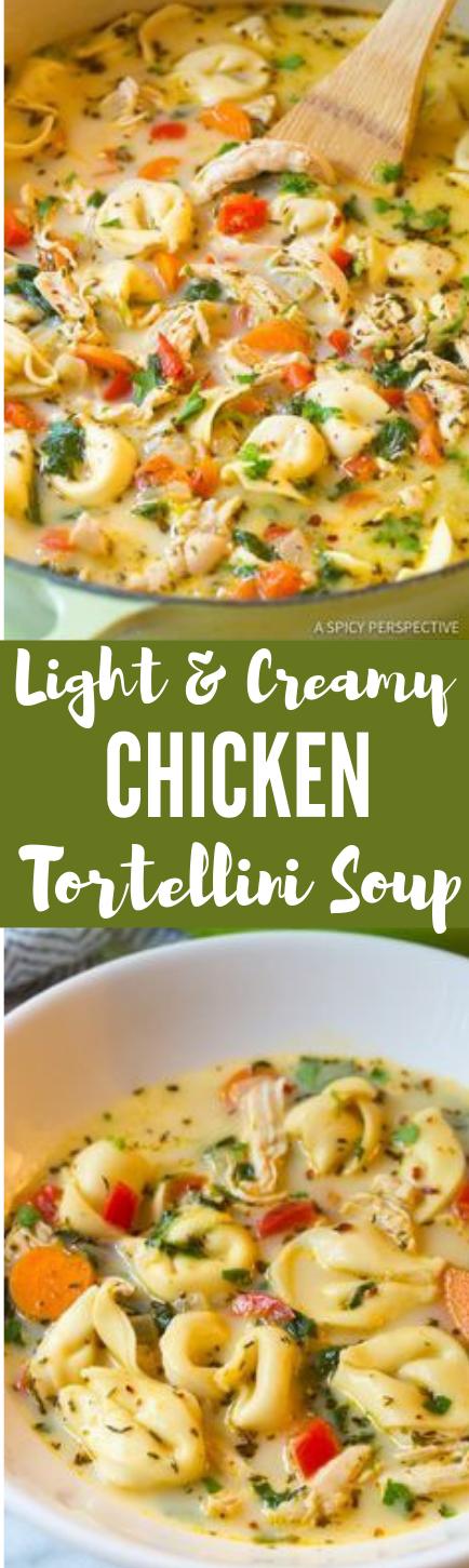 Creamy Chicken Tortellini Soup #vegetarian #food