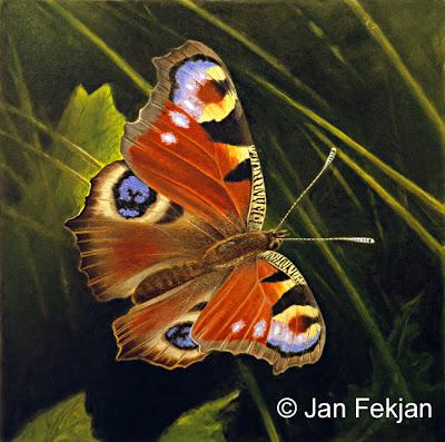 Bilde av digigrafiet 'Dagpåfugløye'. Digitalt trykk laget på bakgrunn av maleri av sommerfugl. Illustrasjon av dagpåfugløye, Aglais io. Hovedmotivet er en fargerik sommerfugl som flyr mellom gress og blader. Bakgrunnen er grønn. Bildet er kvadratisk.