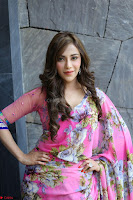 Angela Krislinzki Rogue Movie Fame Telugu Actress in Saree Backless Choli 115.JPG