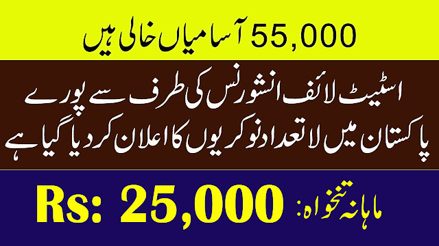 State Life Insurance Corporation of Pakistan jobs 2019 | 55,000 Vacancies |