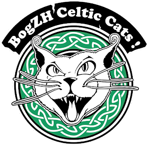Rock breton, Rock celtique, rock 'n' roll celtic punk folk