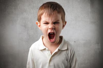 Jangan Beli Ebook Panduan Didik Anak Sebelum Tahu Isi Kandungannya