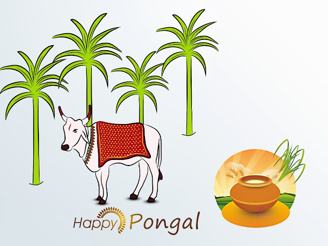 Pongal 2021 Pictures
