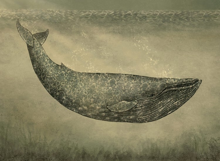 12-Damask-Whale-The-Fan-Brothers-Surreal-Illustrations-www-designstack-co