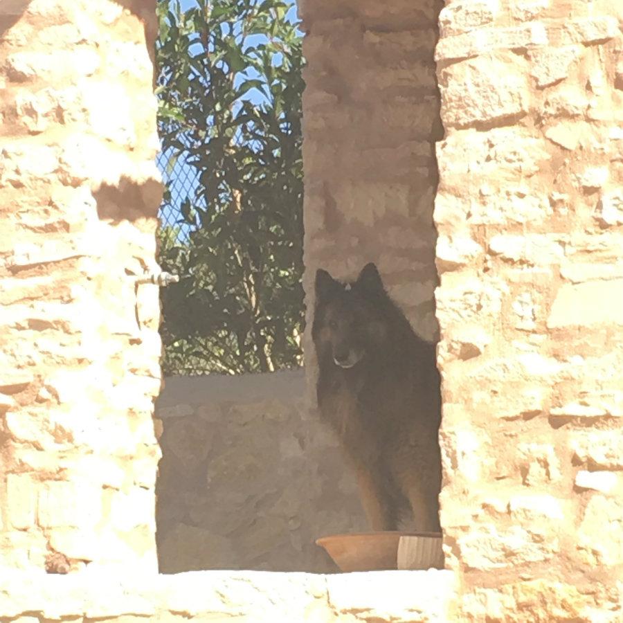Refuge Gco Essaouira