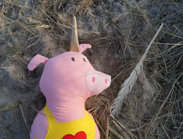 """Phantastische Freunde: """"Emmi und Einschwein"""" von Anna Böhm (+ Verlosung). Die Einschwein Puppe ist handgenäht und fördert die Phantasie der Kinder."""