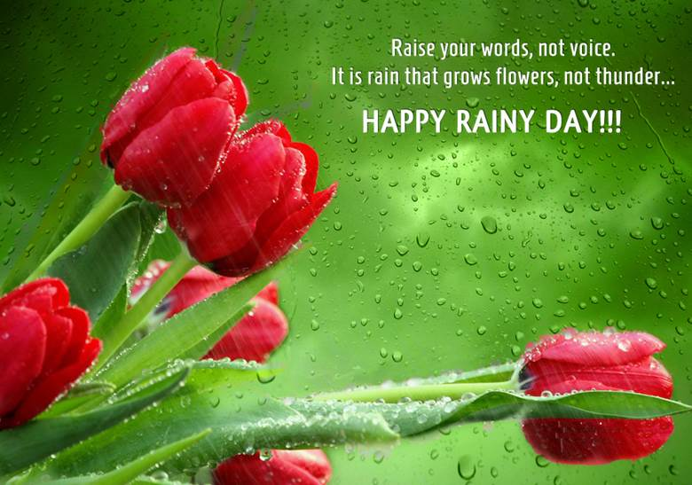 Peony Love Quote Wallpaper Sms Poetry Shayari Amp Wishes Portal Happy Rainy Day Wishes