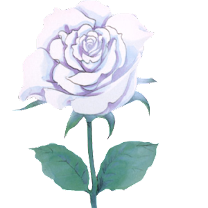 PNG | FAMILY RENDERS: PNG #27 ROSA BLANCA Png__27_rosa_blanca_by_family_renders-d7xjapl