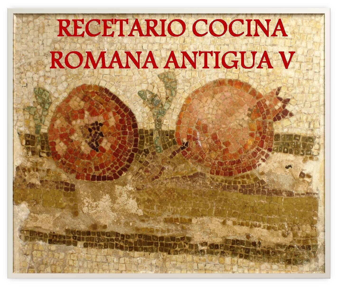 De Re Coqvinaria Recetario De Cocina Romana V