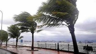 أمطار رعدية تضرب الشرقية.. والمحافظة تُعلن الطوارئ