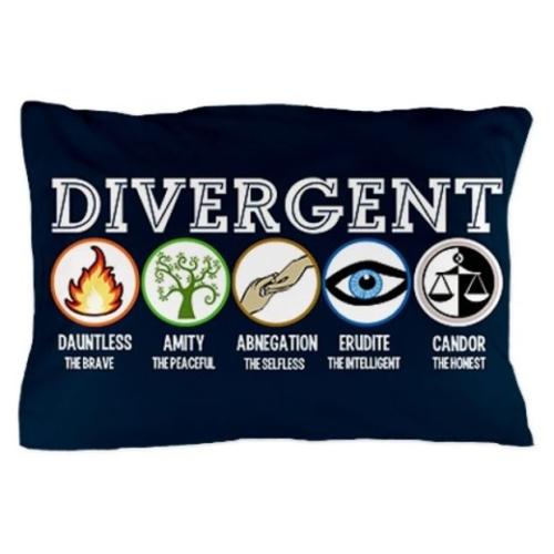 Divergent pillow