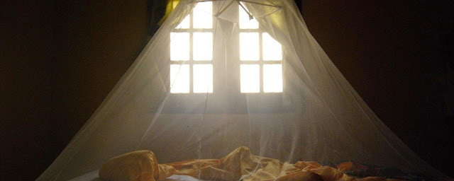 BASF keluarkan kelambu yang boleh bunuh nyamuk untuk kawal masalah Malaria