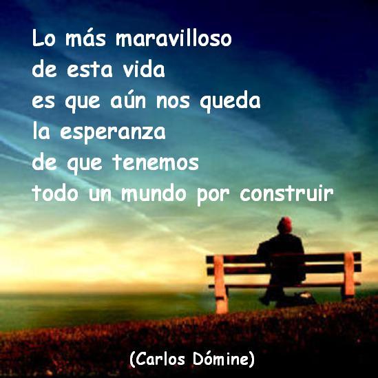 El Blog De Carlos Dómine Frases Para Reflexionar Lo Más
