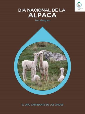 dia nacional de la alpaca
