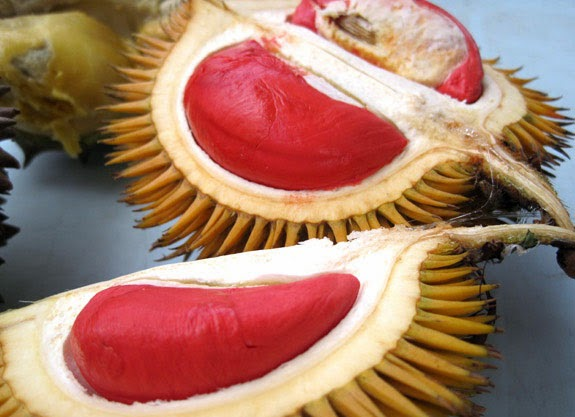Buah durian aneh