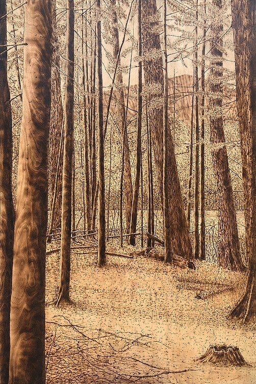 04-Spring-Trail-Paul-Chojnowski-Burned-and-Scorched-Paper-and-Wood-Fire-Drawings-www-designstack-co