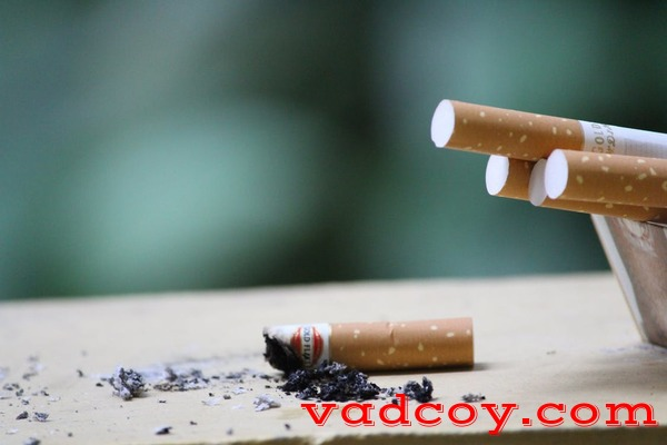 Hukum Merokok dan Jual-Beli Rokok