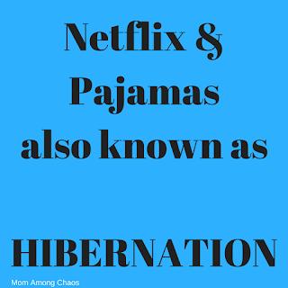 hibernation, memes, humor, netflix, quotes, funny, lol