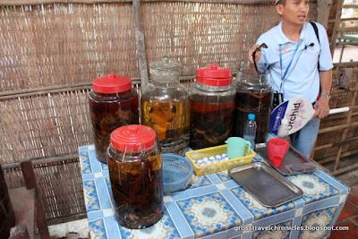guide offering a taste of snake wine