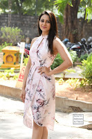 rakul preet singh khakee success meet 21.jpg